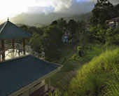 Birds Valley Resort – Munnar