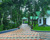 Misty Lake Resort Munnar