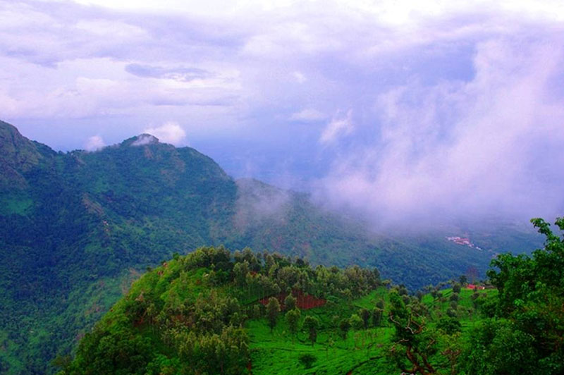ooty tour package - cochi, southchalo